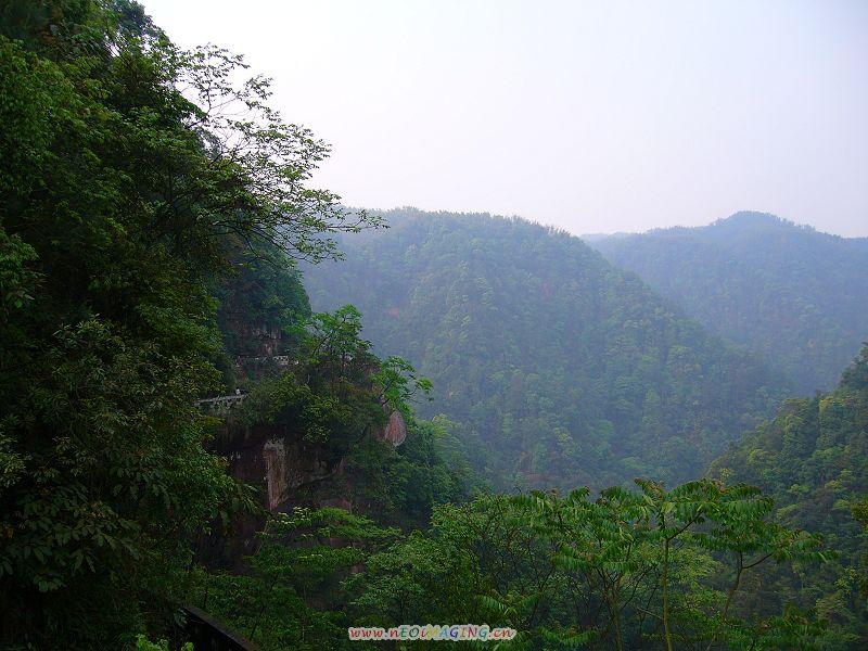 四川省泸州市合江县佛宝风景区-----玉兰山风光