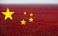 辽宁辽河红海滩被制成巨幅国旗