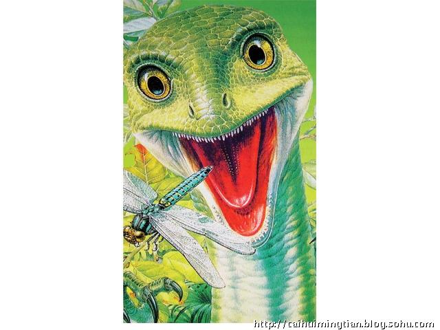 关于恐龙的知识-彩绘明天-搜狐博客