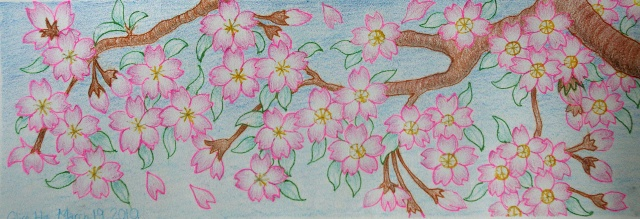 alice十二岁画    用彩色铅笔绘制