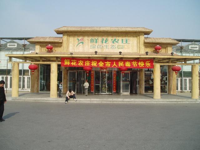 大连飞机场附近辛寨子有一全家吃饭的好地方