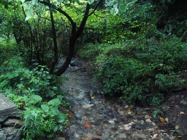 栾川美丽的风景
