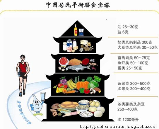 中国居民平衡膳食宝塔的说明及应用-michael营养工作