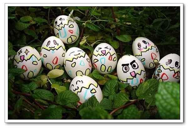 鸡蛋创意画_这鸡蛋画的太有创意了-舒心-搜狐博客