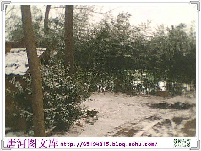 农村打扫雪-唐河图片之源潭乡村雪景图片